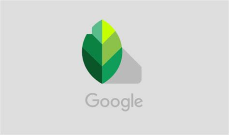 google snapseed tutorial snapseed l app per l editing di foto e immagini facile da