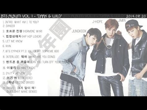 download mp3 bts dark and wild bts방탄소년단 rain album dark wild audio mp3 vidoemo