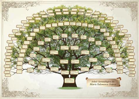 pin arbol genealogico para colorear dibujos imagixs imagen