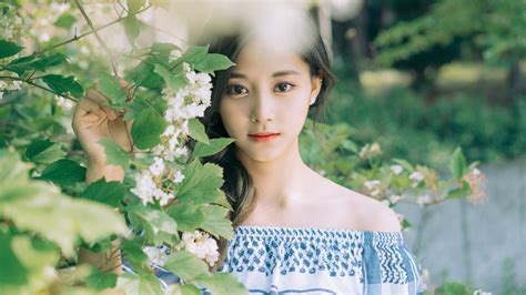 Images Of Flowers by Tzuyu Twice Beautiful Hd Wallpaper K Pics 662