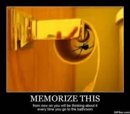 Funny Spider Meme - i hate spiders jpg