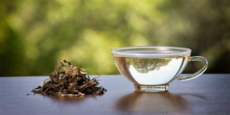 Teh Putih ini lho teh termahal di indonesia news from indonesia