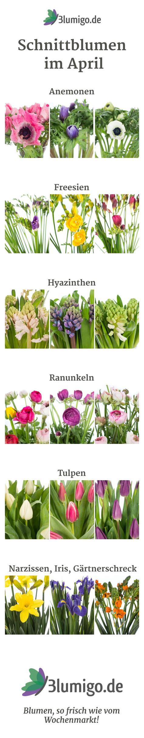 Blumen Im April by Die Besten 25 Blumen Tischdeko Ideen Auf
