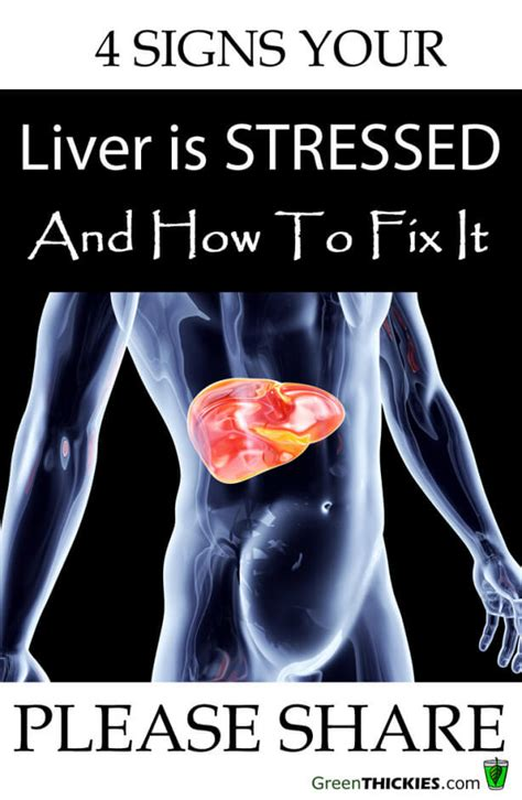 Were Can I Get Ultimate Gold Detox by 4 Signs Your Liver Is Stressed How To Fix It