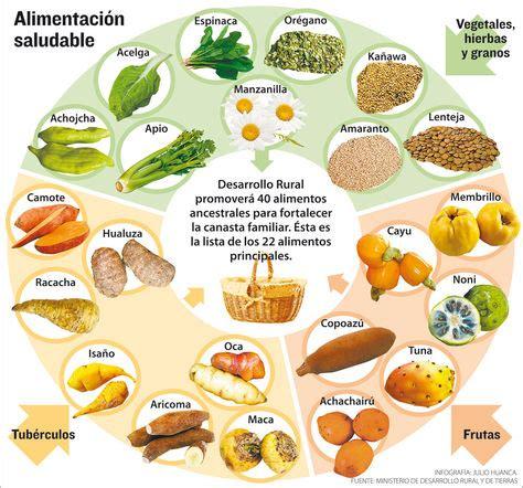 los alimentos no saludables promover 225 n 40 alimentos nativos y saludables para la