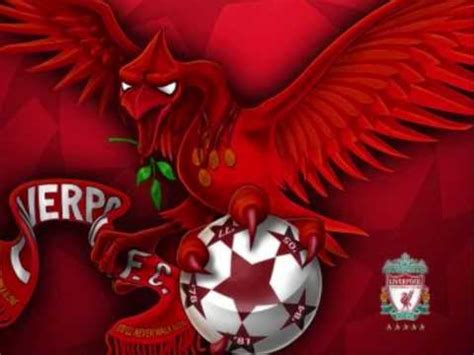 glitter wallpaper liverpool the fields of anfield road youtube