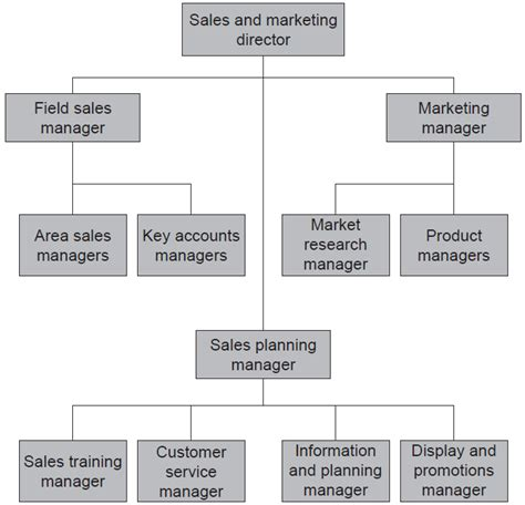 sle of organizational structure sales structures and organization sales management tutorial wisdom