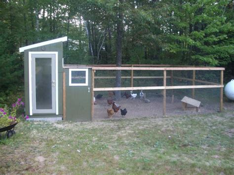 backyard chicken run mlo88jco s chicken coop backyard chickens community