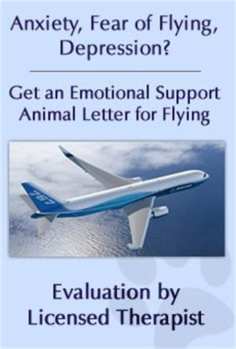 emotional support certification 25 best ideas about emotional support animal on service