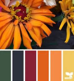 fall color scheme 25 best ideas about fall color palette on