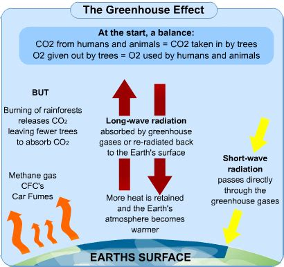 causes and effects of global warming | s cool, the