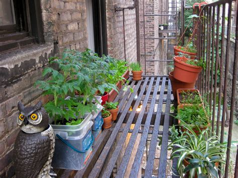 Délicieux Jardin En Pots Potager #1: jardin-suspendu-legumes-pots.jpg