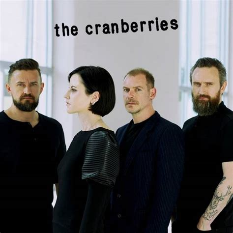 the cranberries testo the cranberries why testo traduzione
