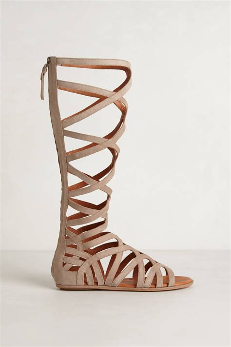 gentle souls gladiator sandals gentle souls tarara gladiator sandals in lyst
