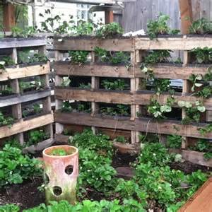 Vertical Pallet Garden Bed Its Time To Make An Attractive Pallet Vertical Garden Bed
