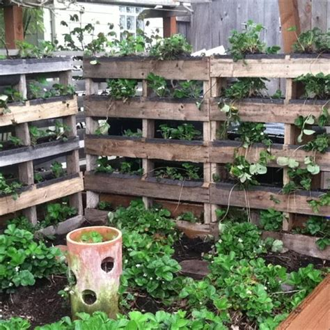 Vertical Garden Made From Pallets Its Time To Make An Attractive Pallet Vertical Garden Bed