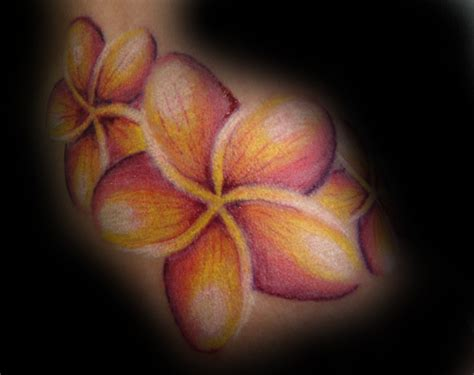 plumeria flower tattoo designs plumeria flower designs