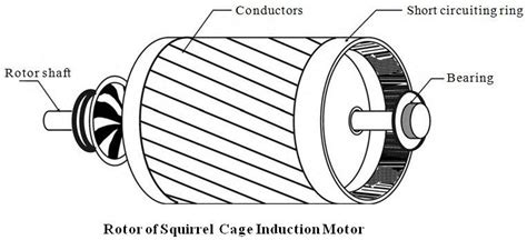 squirrel cage rotor induction motor squirrel cage induction motor the engineering projects