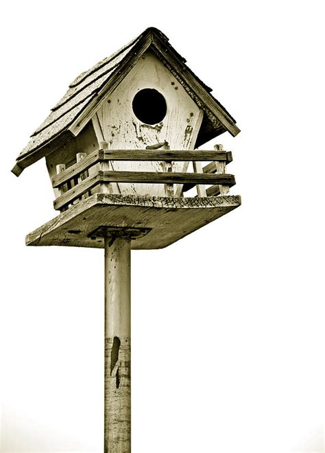 birdhouse on a pole photograph by charles benavidez