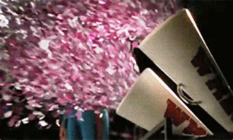 confetti gifs | wifflegif