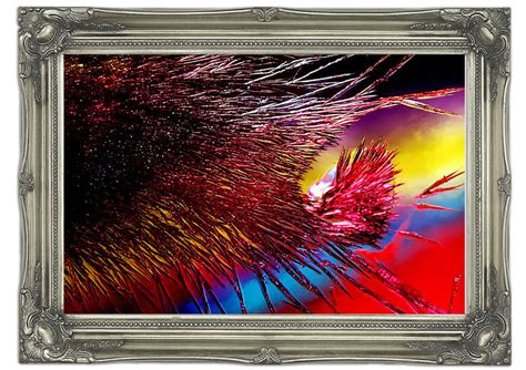 abstract wall mural rainbow feathers abstract mural printed wall mural