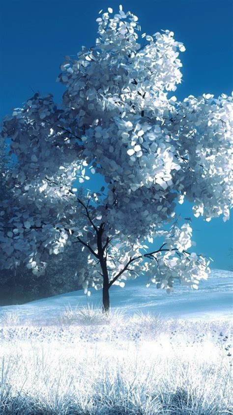 winter wallpaper for android winter hd wallpapers for android mobile screen photography prisms