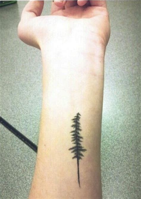 small pine tree tattoo pine tree so to what i want maybe even same