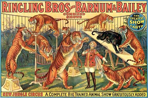 Barnes And Bailey Circus by P T Barnum The Circus A St A Day