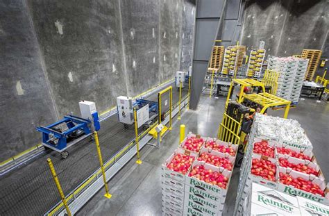 cold storage new year oranges matson leads industry in automated cold storage technology