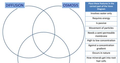 diffusion and osmosis venn diagram diffusion osmosis active transport venn diagram