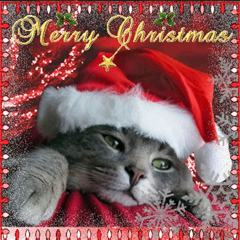 cute merry xmas card  merry christmas wishes ecards greeting cards
