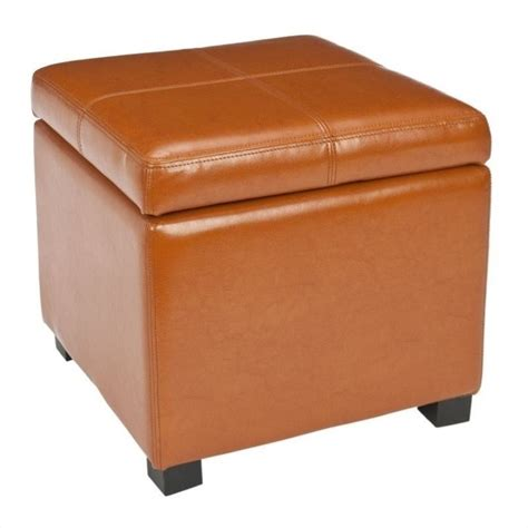 Safavieh Elizabeth Beech Wood Leather Storage Ottoman In