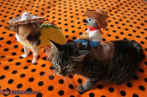 taco dog rodeo cat costume
