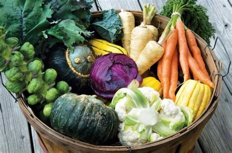 fall vegetables grow your best fall garden vegetables what when and how