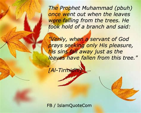 hadith muhammad s legacy in the and modern world foundations of islam books hadith quotes like success
