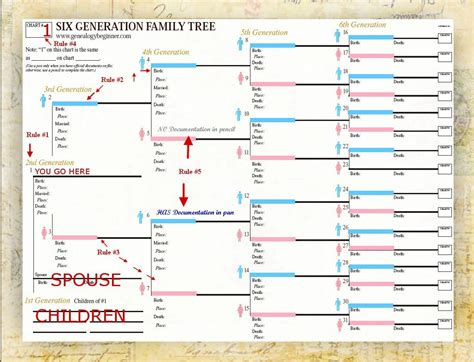 tree or chart use smartdraw s included family tree templates to easily