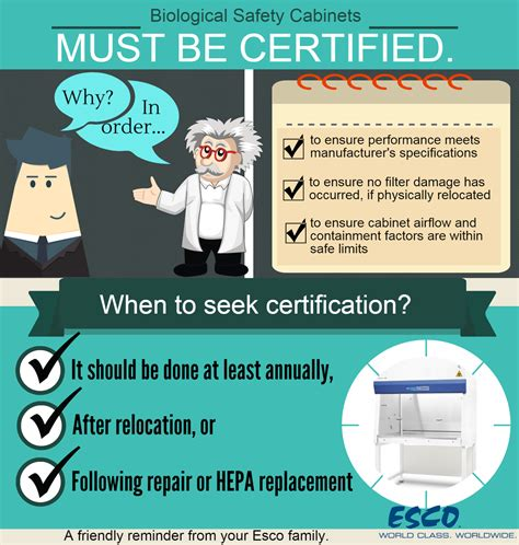 biosafety cabinet certification companies biosafety cabinet certification schedule savae org