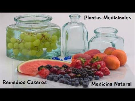 plantas medicinales remedios caseros medicina natural plantas medicinales medicina natural remedios caseros