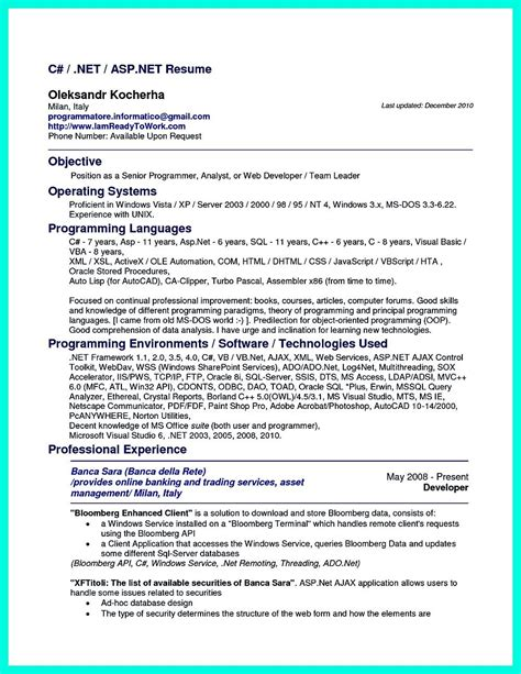 Resume For Computer Programmer by Computer Programmer Resume Has Some Paragraphs That Focuses On The Project Management Object