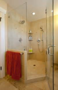 Bathroom Corner Shower Ideas Startling Shower Corner Shelf Unit Decorating Ideas Images In Bathroom Transitional Design Ideas