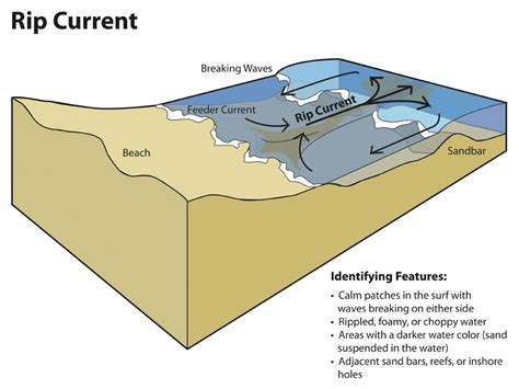 rip diagram rip currents national geographic society