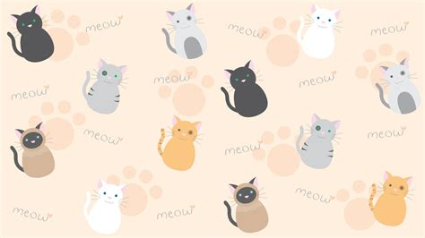 wallpaper cats kawaii kawaii cat wallpaper wallpapersafari