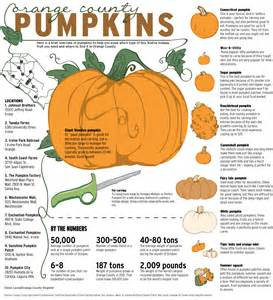 pumpkin facts where to a pack of pumpkins in o c the orange