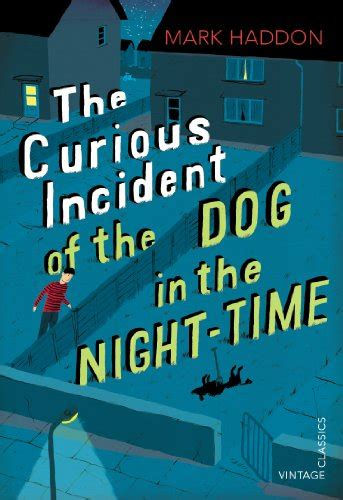 The Curious Incident Of The In The Nighttime Essay by The Curious Incident Of The In The Time Co Uk Haddon 9780099450252 Books