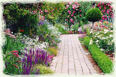 flowering plants for home garden perennial flower garden ideas photograph flowers garden su