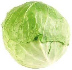 repollo verde vegetales molina