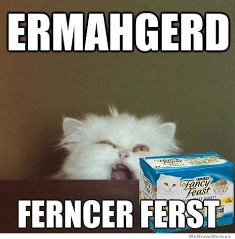 Fancy Cat Meme - fancy cat memes image memes at relatably com