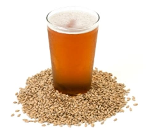 malting at home books malting barley grain at home home brewing by