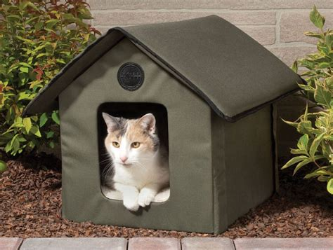 Heated outdoor cat house the green head