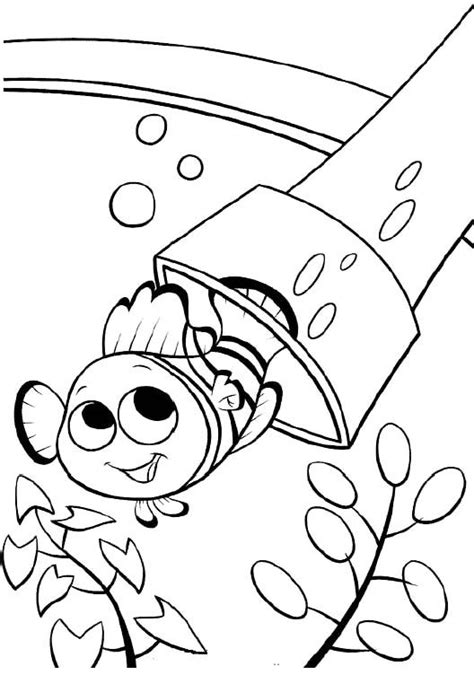 finding nemo coloring pages darla printable nemo the fish coloring pages finding nemo
